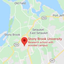 Stony Brook University, New York