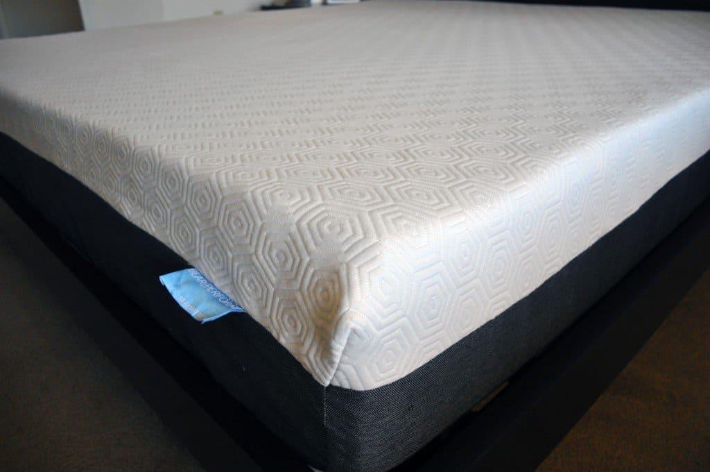 Bear mattress cover close up