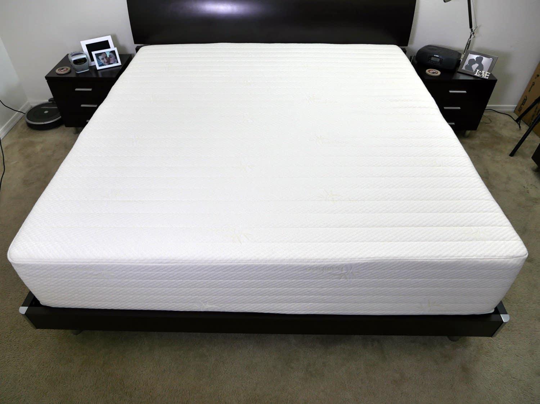 eco mattress vs sleep best brentwood top innovations terra zinus leesa