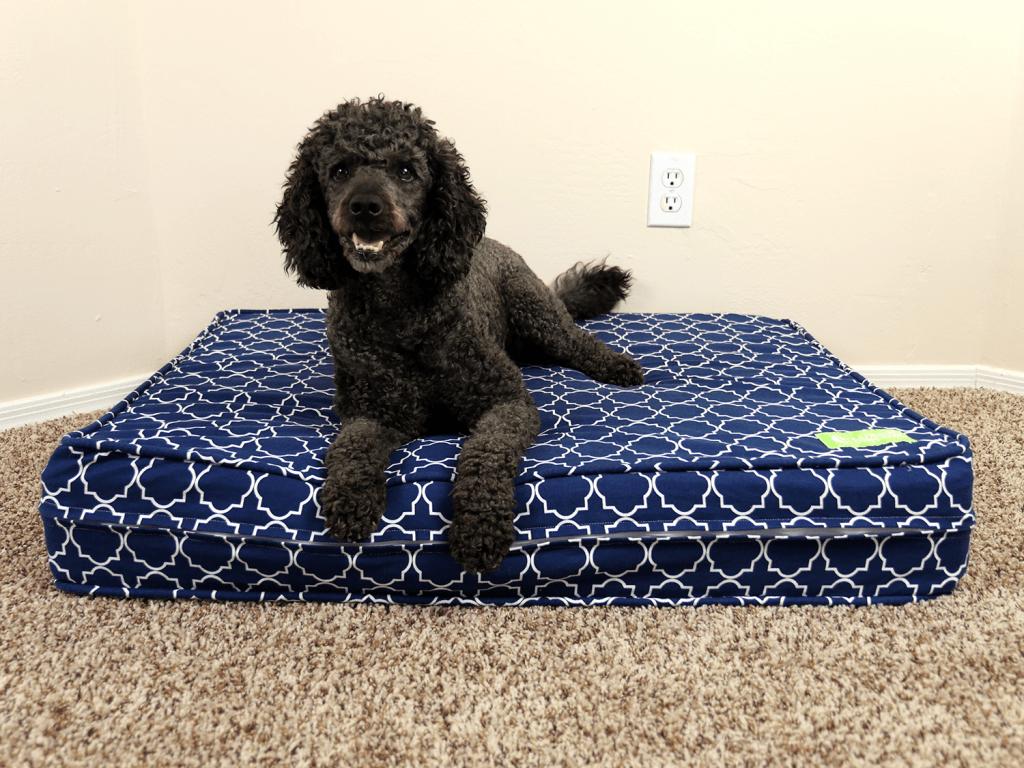 eluxurysupply dog bed tibbers 1