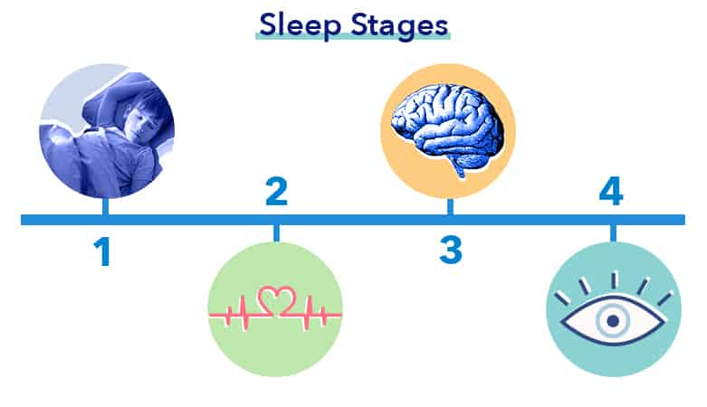 Kid's Guide graphic, sleep stages