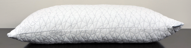 Flat shot of the Coop Home Goods pillow