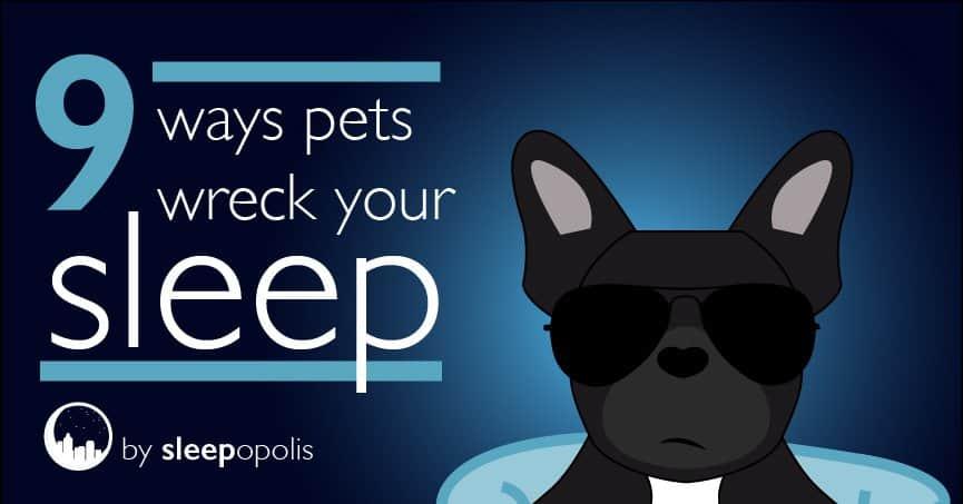 9 Ways Pets Wreck Your Sleep