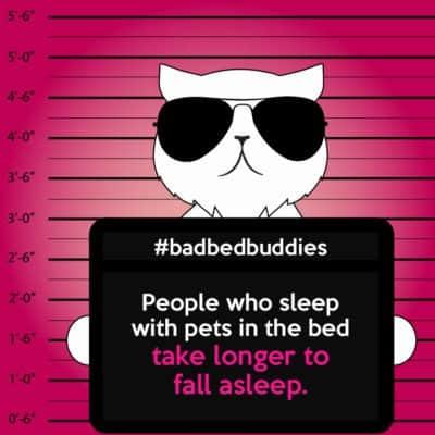 Pets ruin sleep