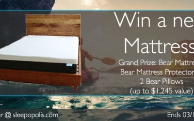 Bear Mattress Giveaway