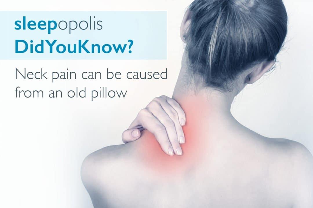 best pillow for neck pain sleepopolis