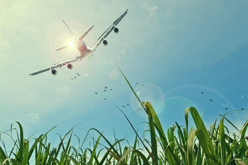 aircraft 465723 1280