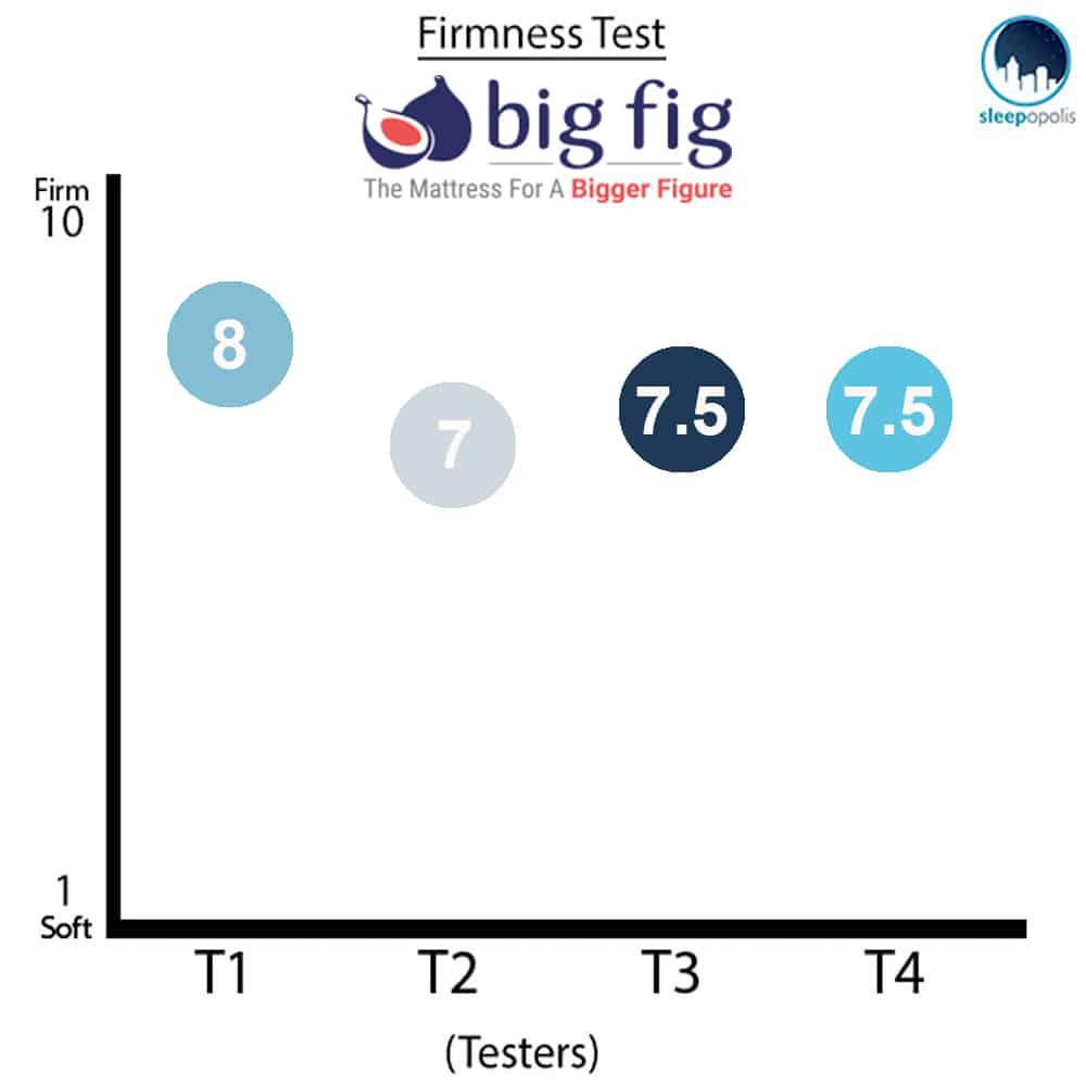 Big Fig Mattress Firmness