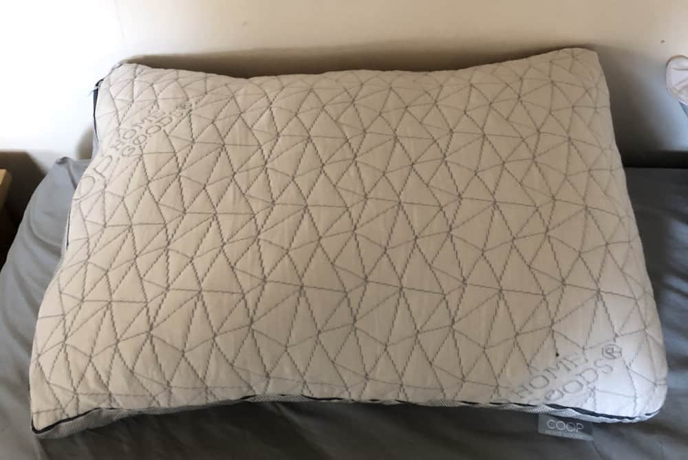 Coop Eden Pillow Review