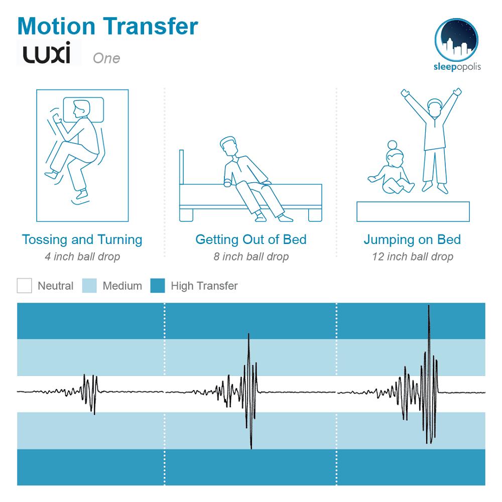 Luxi One Motion Transfer Written