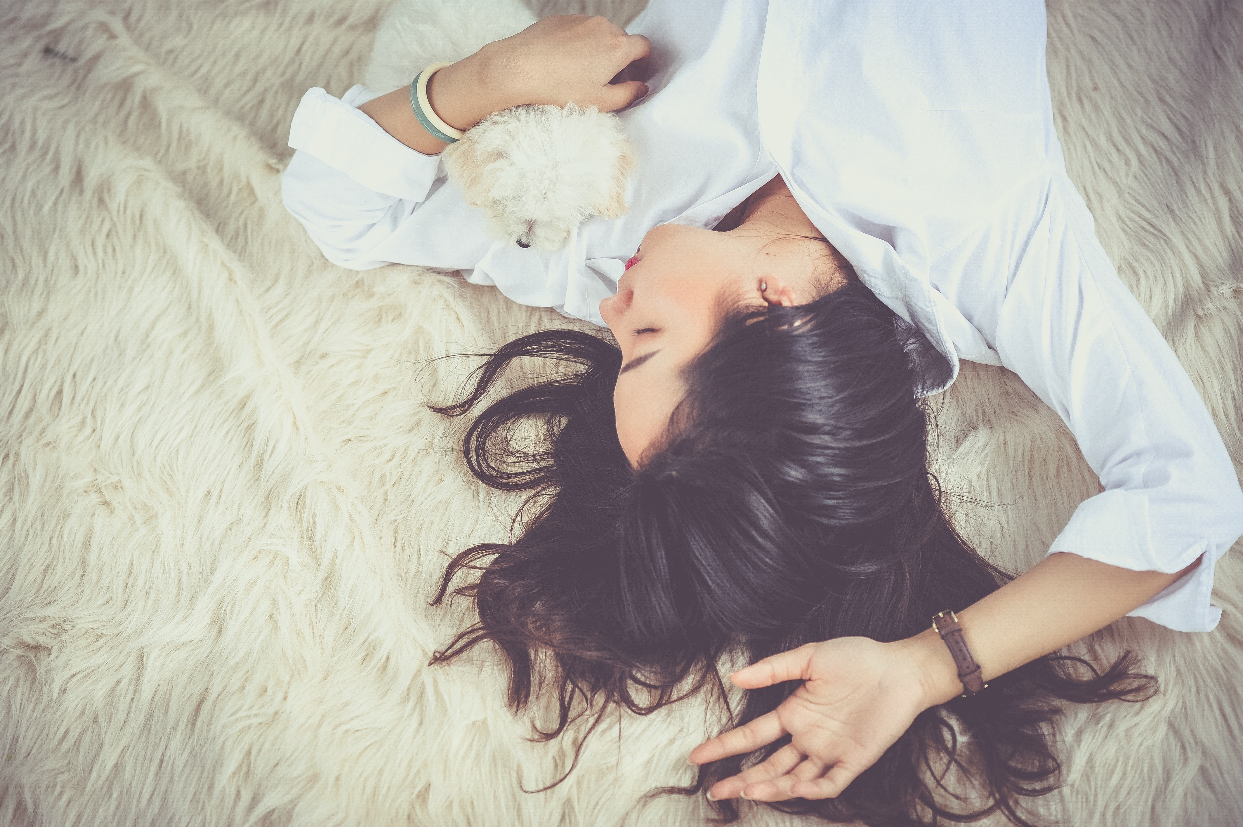 bed-cute-dog-206396 Having Trouble Sleeping? Scientist Suggests Slumbering On Your Back