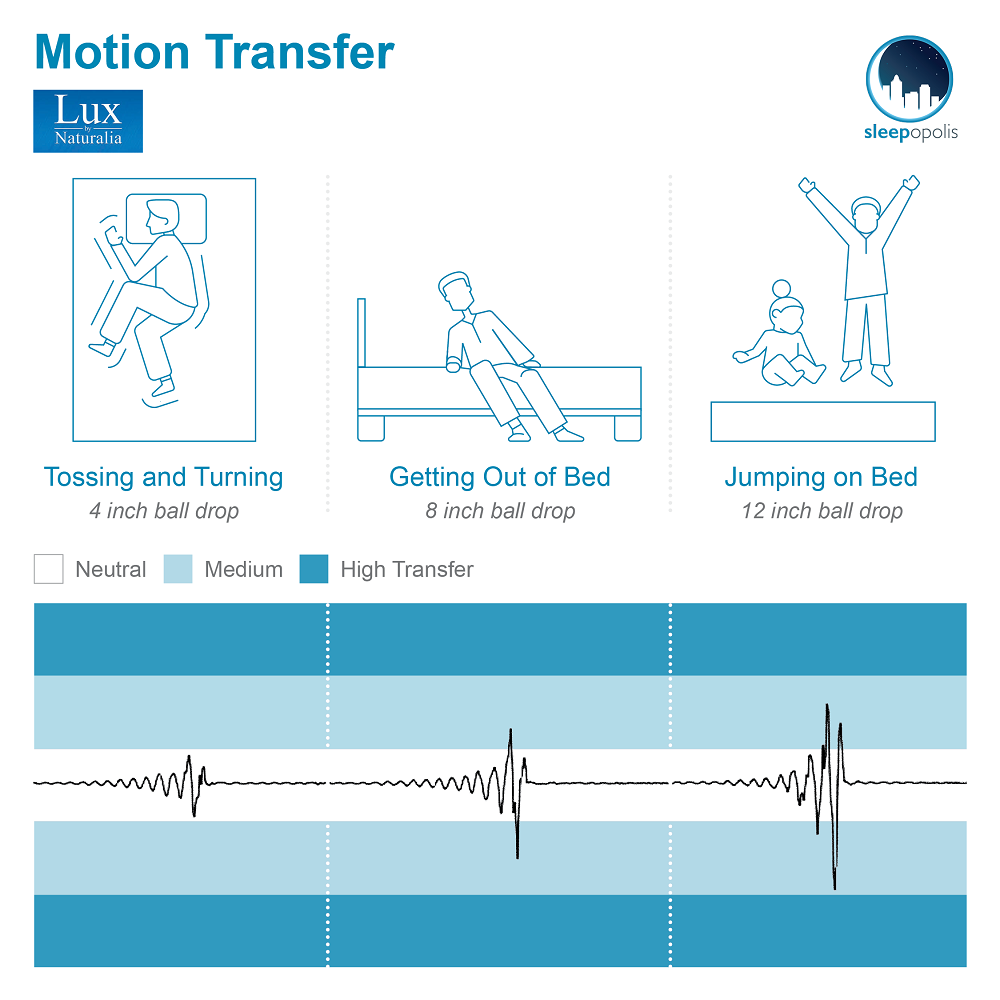 Lux Motion Transfer
