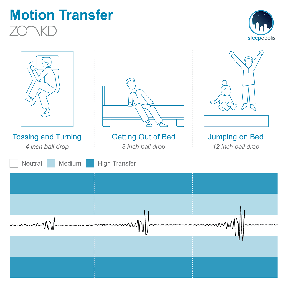 Zonkd Motion Transfer