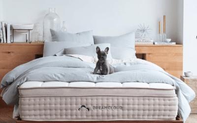 DreamCloud Sleep Unveils New Headboard and Frame