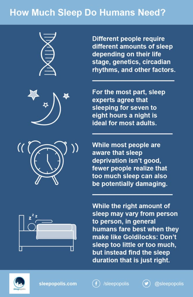 Infographic on human sleep requirements