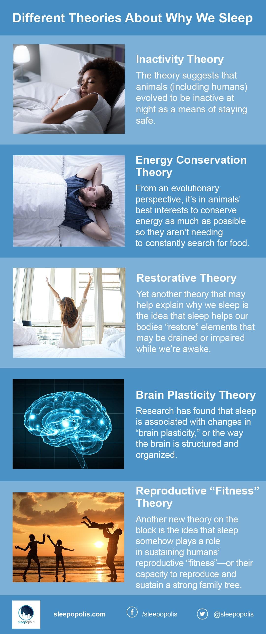 restorative theory of sleep