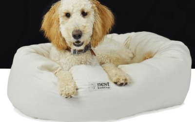 Nest Bedding Debuts New Line of Organic Dog Beds