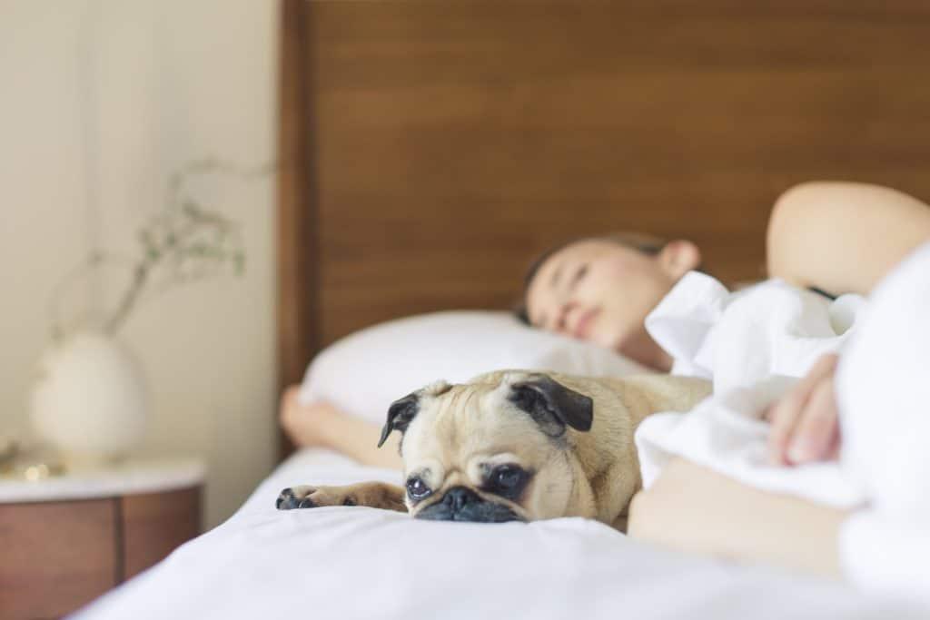 bed bedroom cute 545016