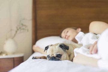 Sleeping With Your Pooch Could Ease Your Chronic Pain