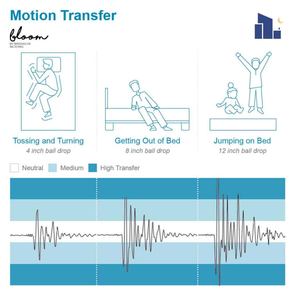 Bloom Hybrid Motion Transfer