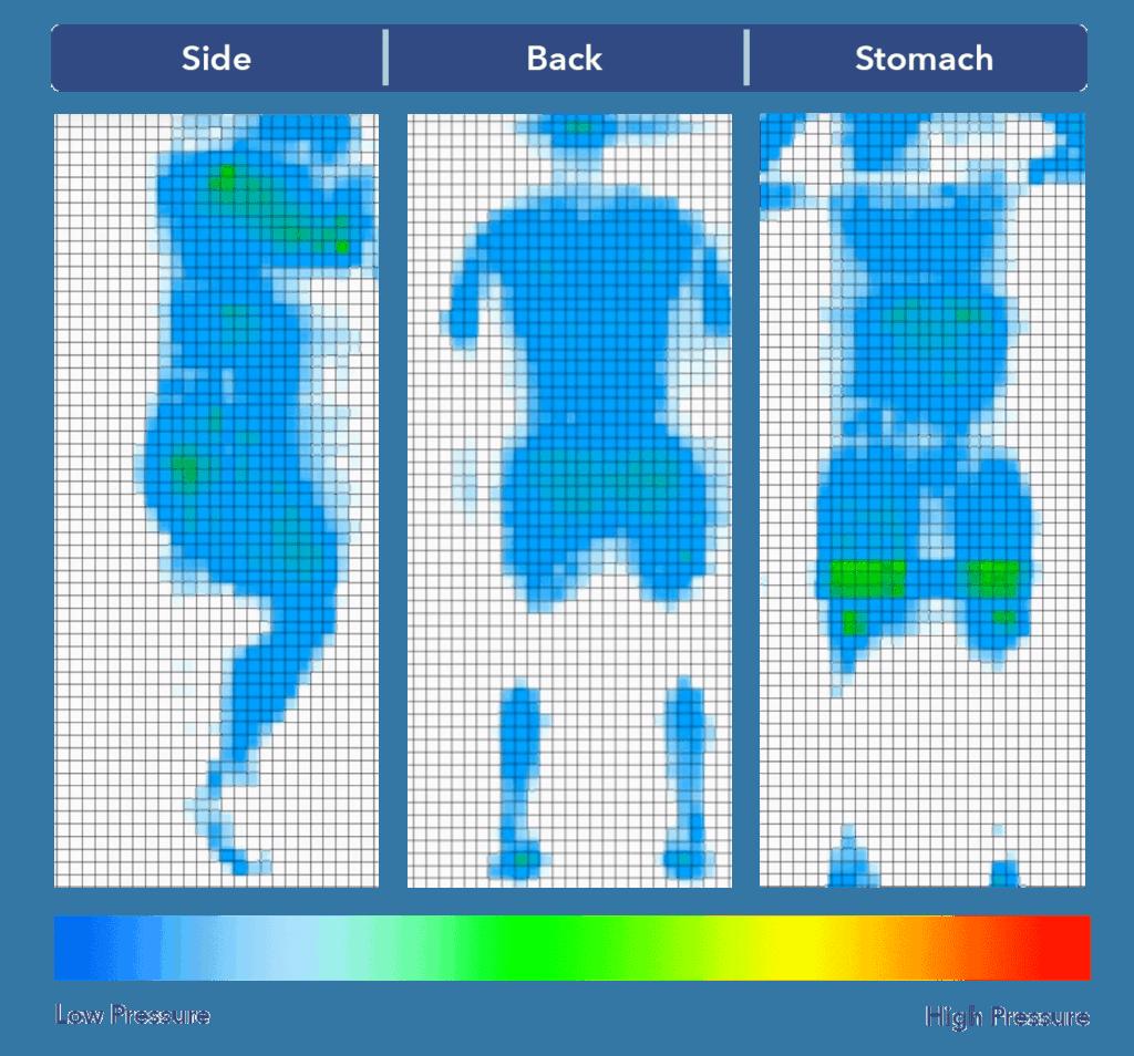 Level Sleep pressure map