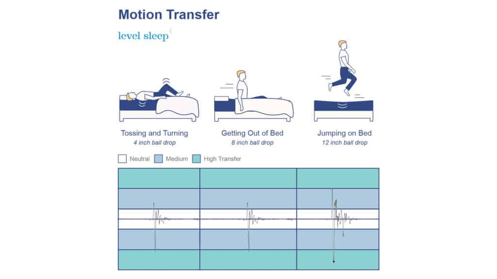 Level Sleep Motion Transfer