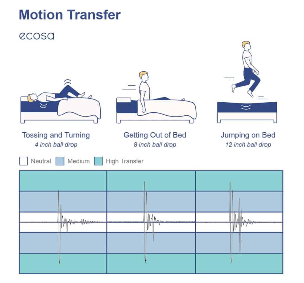 Ecosa Motion Transfer