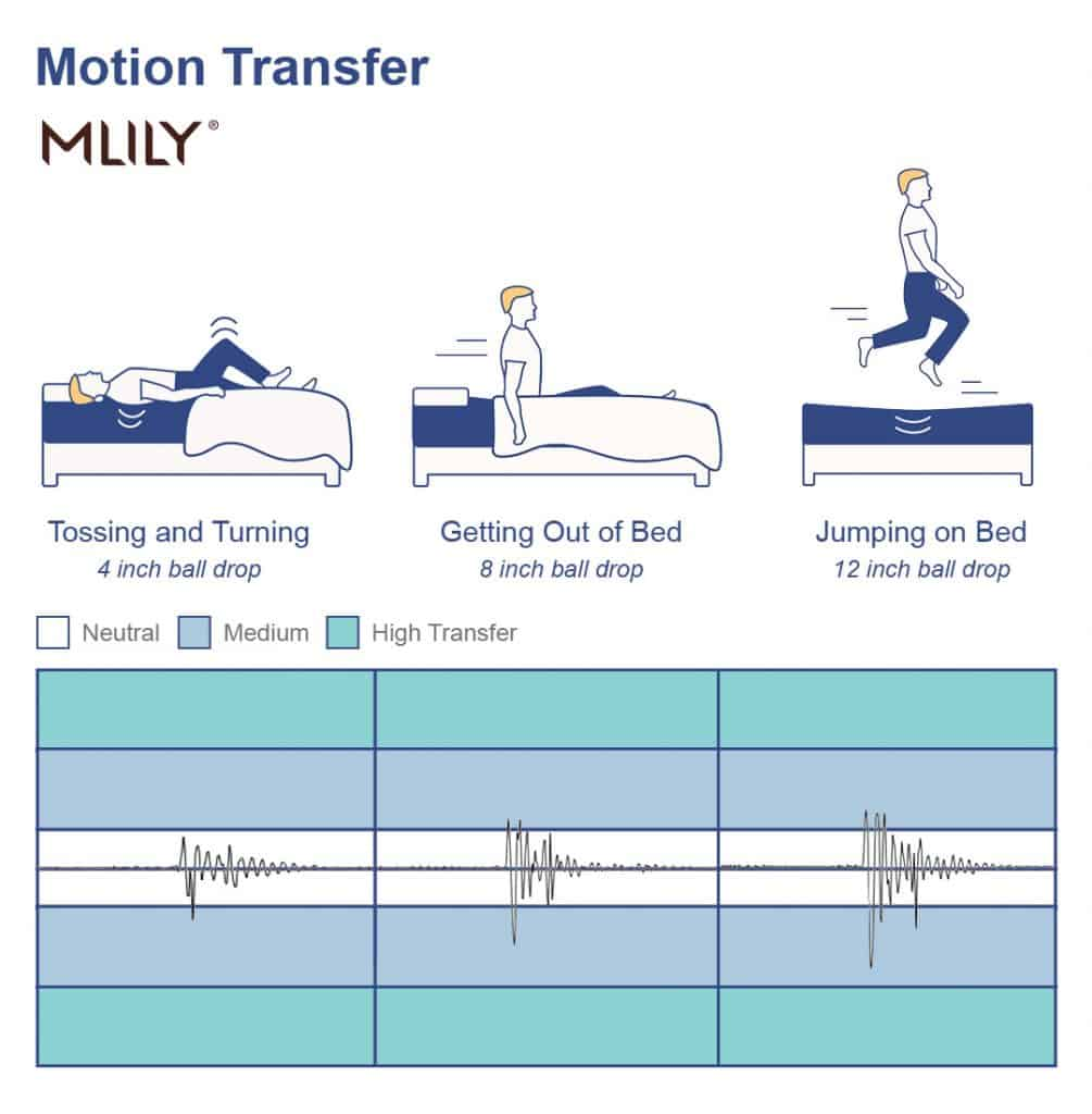 MLily mattress motion transfer
