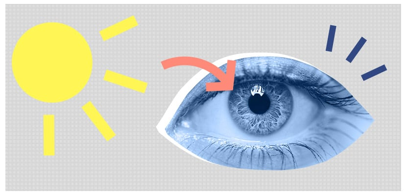 Incoming Light affects Circadian Rhythm