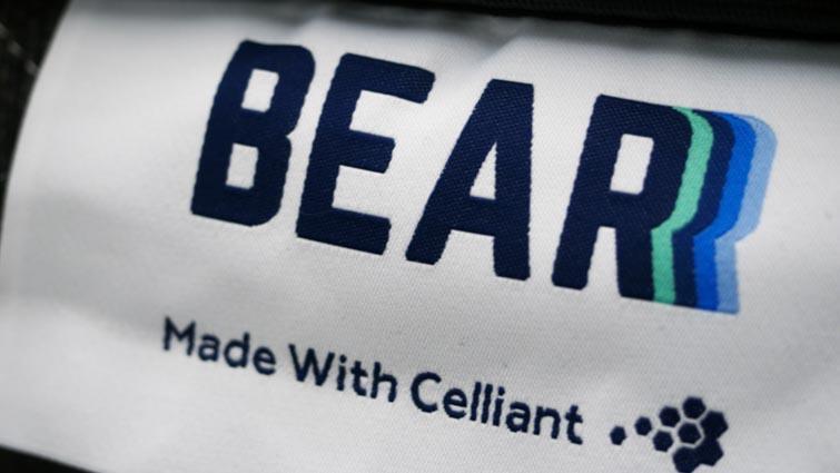 Bear Hybrid Tag