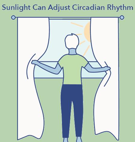 sunlight clock graphic, reset circadian rhythm article, Sleep A-Z