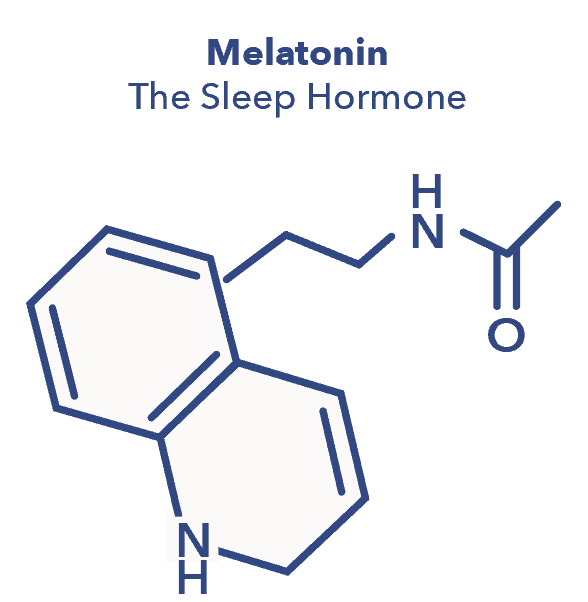 Melatonin graphic, N1 article