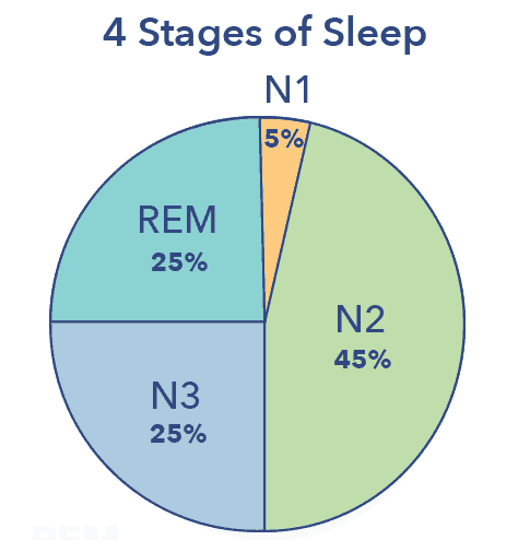 N3 sleep graphic, graph
