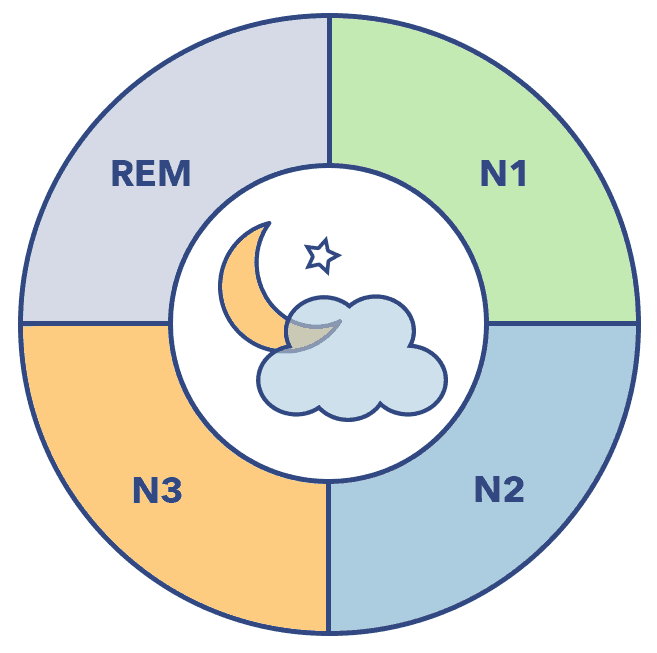 Sleep A-Z graphic, sleep stages