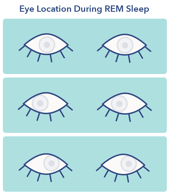 Rapid eye movement graphic, REM sleep