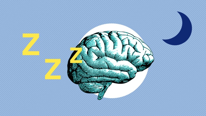 Sleep and the Brain