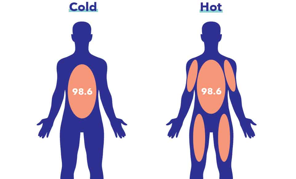 Core Body Temperature in Sleep