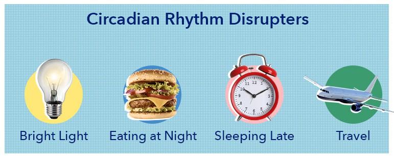 Circadian Rhythm Disruptors