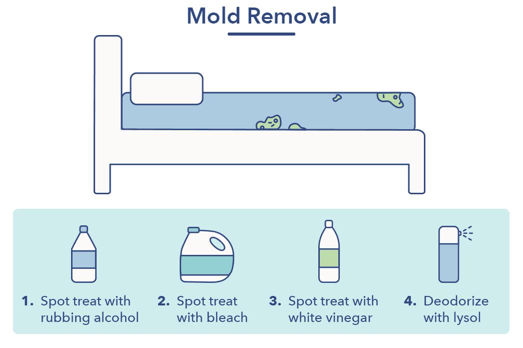 How to Clean a Mattress | Sleepopolis