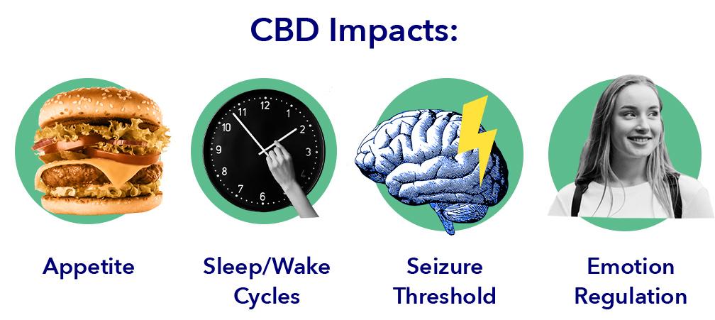CBD Impacts
