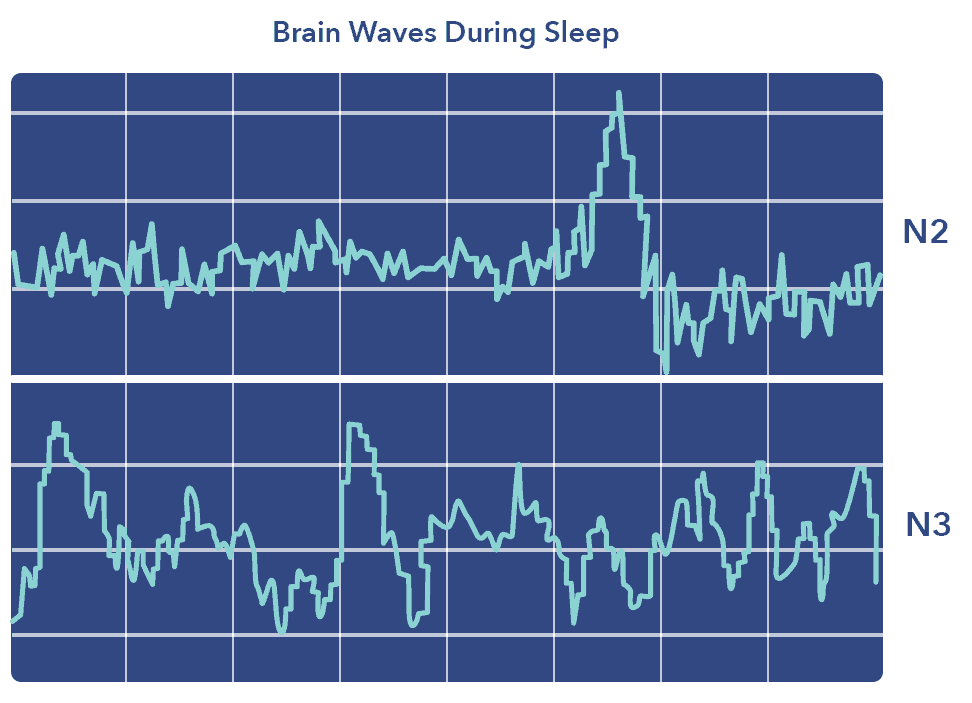 Brain waves graphic, Guide to Napping