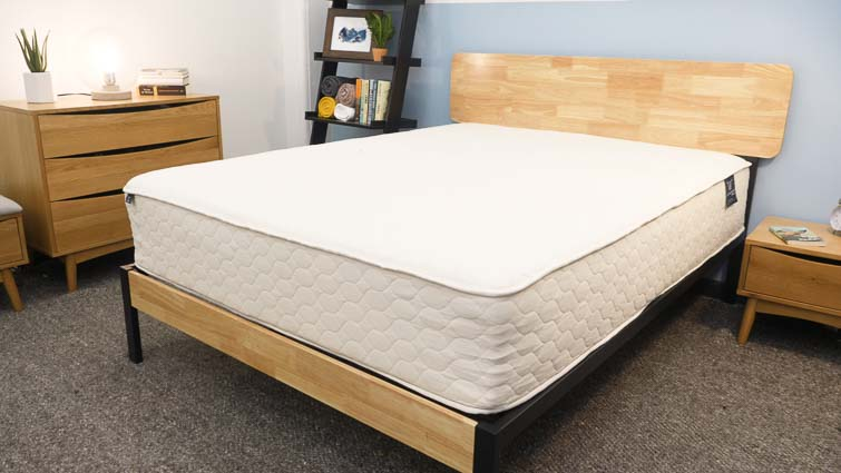 WinkBeds EcoCloud Mattress Review