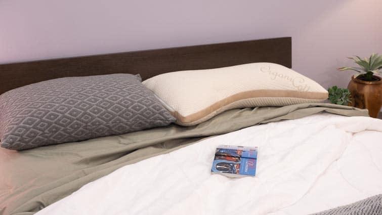 eli & elm pillows