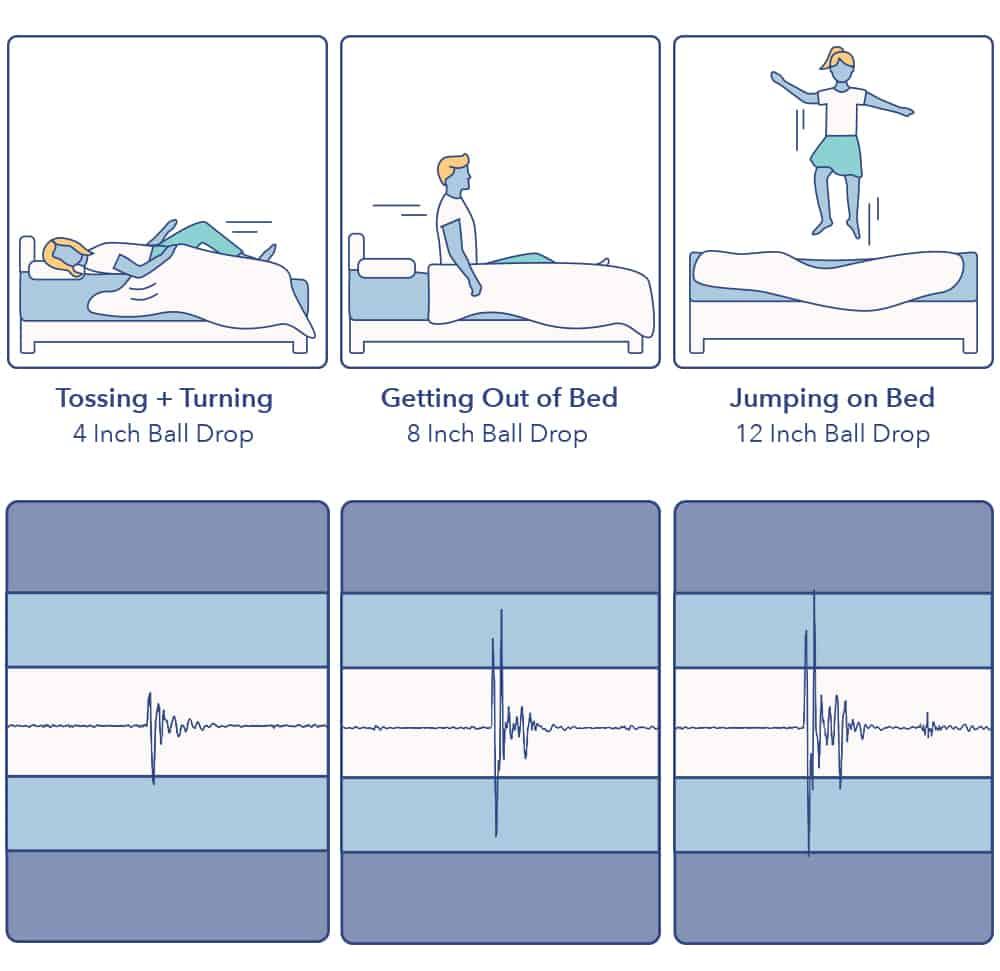 Signature Sleep Motion