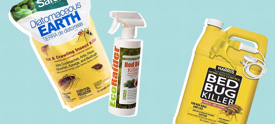 Best Bed Bug Killers