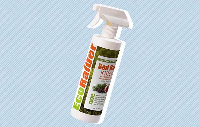 Best Bed Bug Sprays Sleepopolis