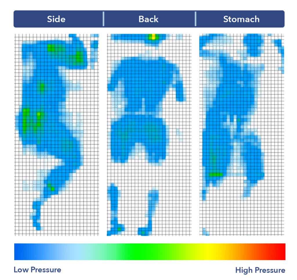 Bear Pro Pressure Map
