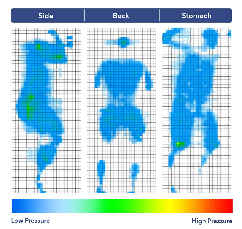 Zinus Memory Foam mattress pressure map