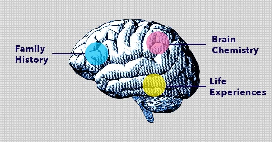 Brain graphic mental health