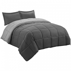 HIG 2pc Down Alternative Comforter Set